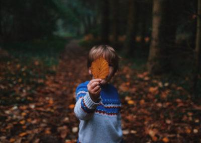 Осенние фото 2017 листья ребенок