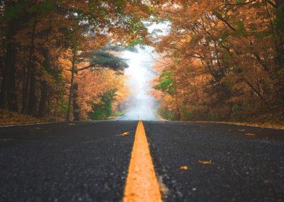 Осенние фото 2017 лес дорога