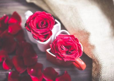 день Святого Валентина красивые фото роза в кружке в форме сердца