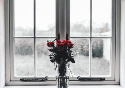 день Святого Валентина красивые фото роза цветы в вазе