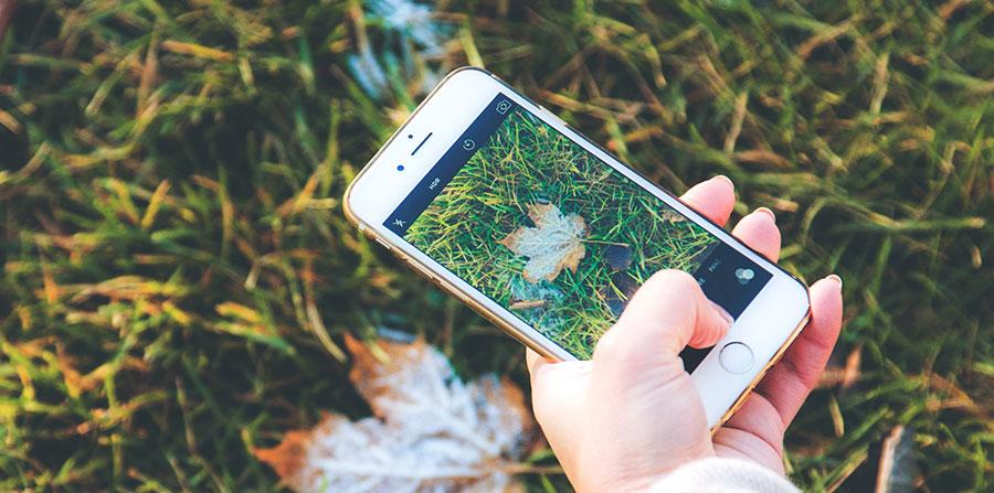 Где взять бесплатные качественные фото для Инстаграм