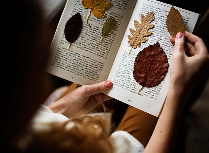 идеи фото осенью для инстаграм - сухие листья в книге