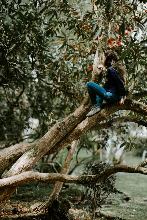 осенние идеи фото для инстаграм - девушка на дереве