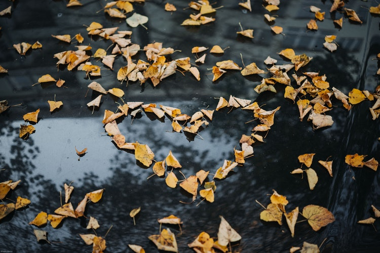 осенние идеи фото для инстаграм - сердце из листьев