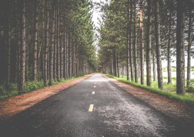бесплатное фото природа и хэштеги для инстаграм